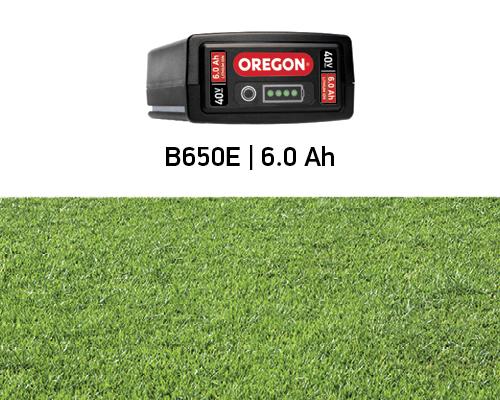 Powierzchnia trawnika 700 m2